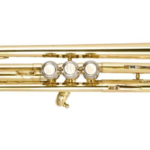 The best 2018 MTT-L Trumpet