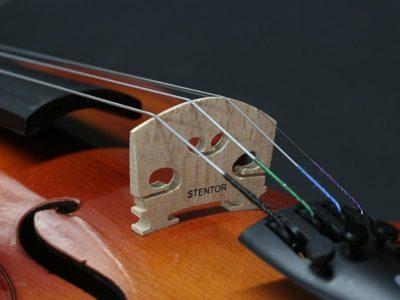 Stentor 1500 4/4 Violin