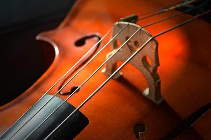 Types of Violins