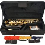 lazarro alto sax carry case
