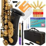 Lazarro Alto Saxophone 1