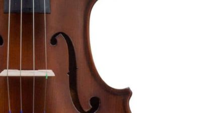 The Bunnel Premier Pupil Violin