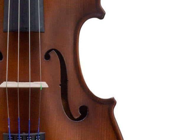 The Bunnel Premier Pupil Violin