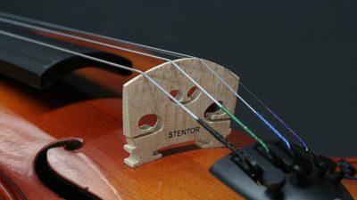 Stentor 4-String Violin