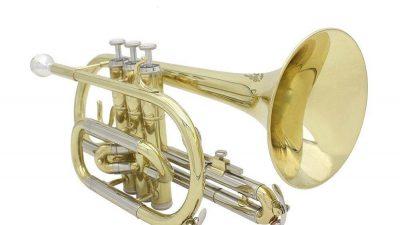 Ammoon B Flat Brass Cornet