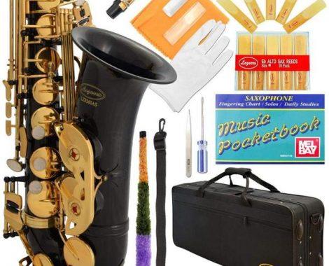 lazarro alto sax accessories